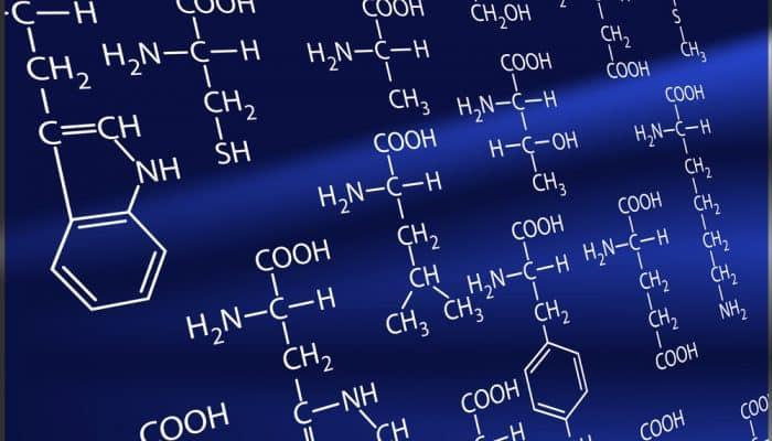 Amino acids. A life basis.