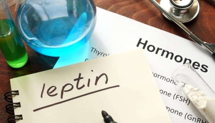 Hormone leptin written on notebook.